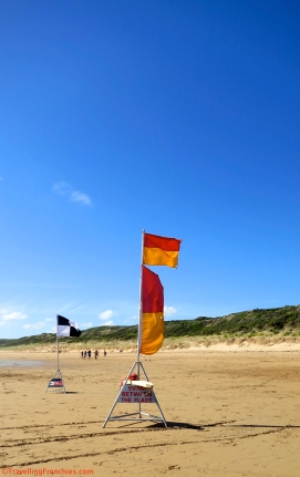 Swim beach flags