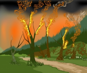 Photo 'Forest Fire' by mapichai courtesy of Freedigitalphotos.net