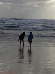 Venus Bay beach