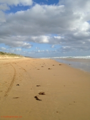 Venus bay beach no 1