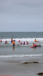 Nippers training beach